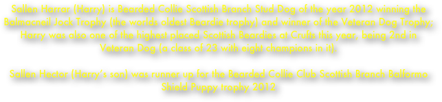 Sallen Harrar (Harry) is Bearded Collie Scottish Branch Stud Dog of the year 2012 winning the Balmacneil Jock Trophy (the worlds oldest Beardie trophy) and winner of the Veteran Dog Trophy;